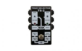 AMT TS-2