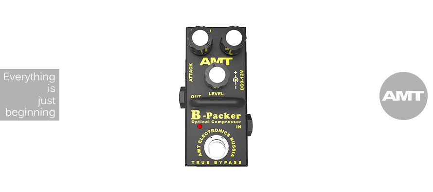 #2016: AMT B-Packer