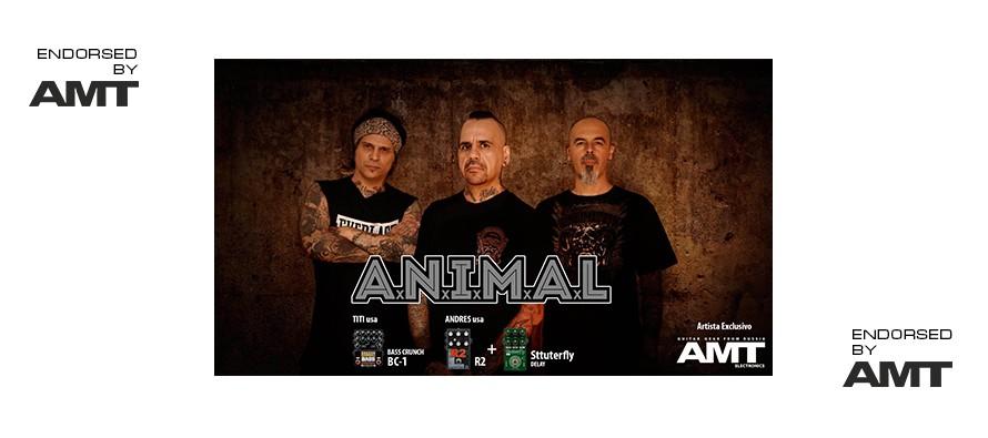 ANIMAL (Argentina)
